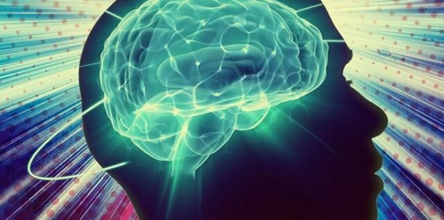 Активный мозг